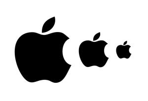 Panduan Membuat Logo